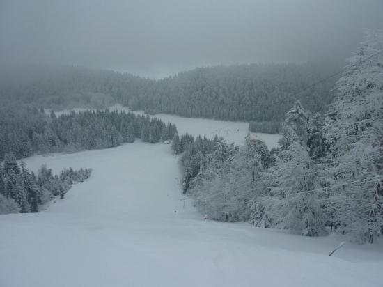 piste noir alpin (60% de pente)